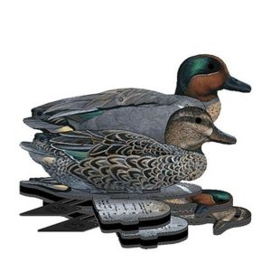 FUD Green Wing Teal