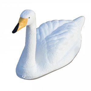 whooper swan decoy
